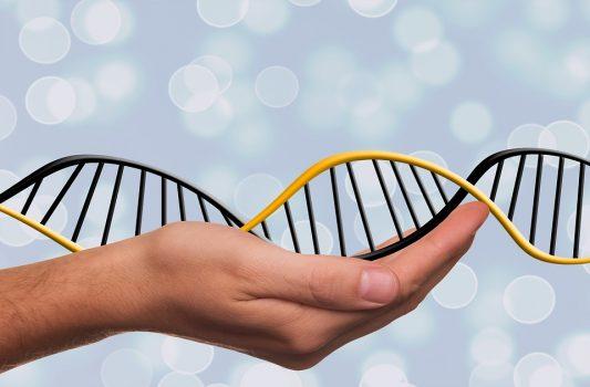 genetica-dna