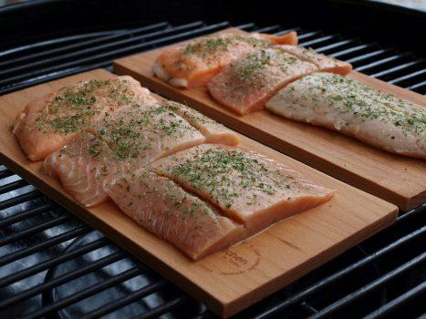 salmon-2326481_960_720