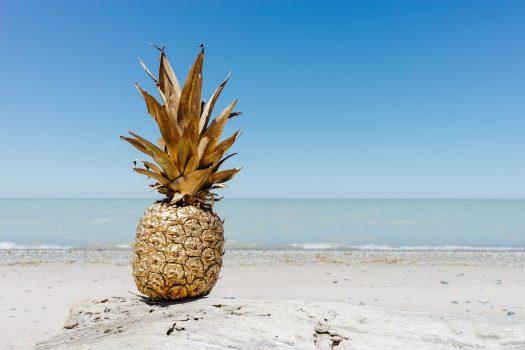 pineapple-2571434_1920